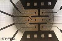 hIPSC neurosphere on MEA (HEPIA)